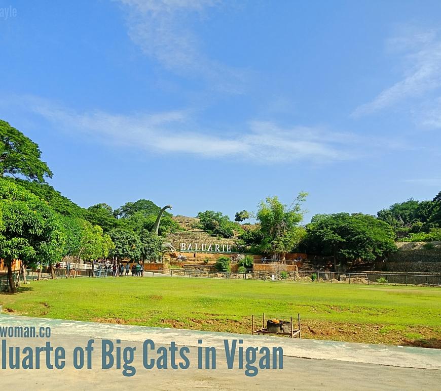 Baluarte Vigan Ilocos Sur Philippines Big cats