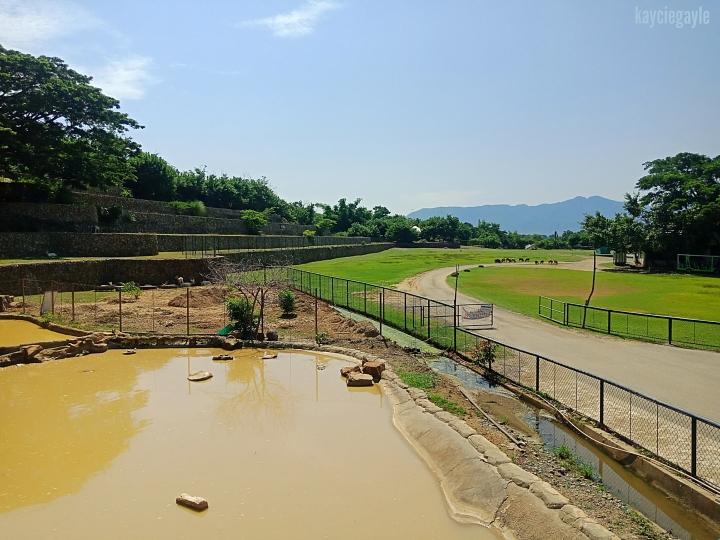 Baluarte Vigan Philippines Pond