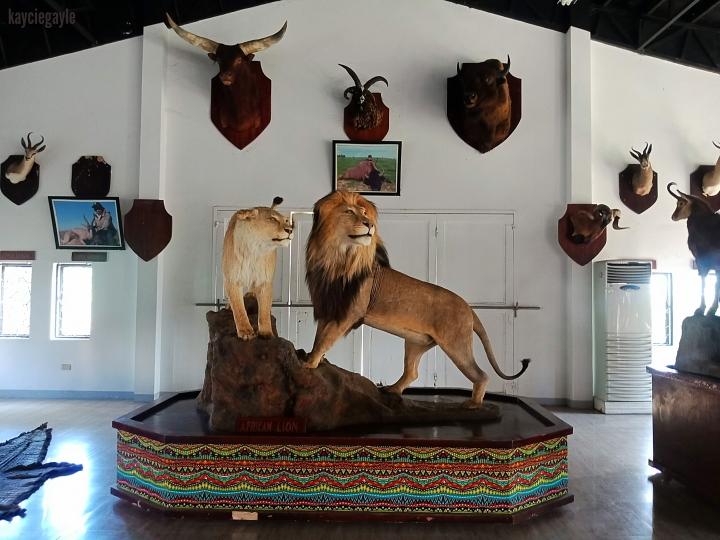 Baluarte Vigan Philippines Lion Tiger