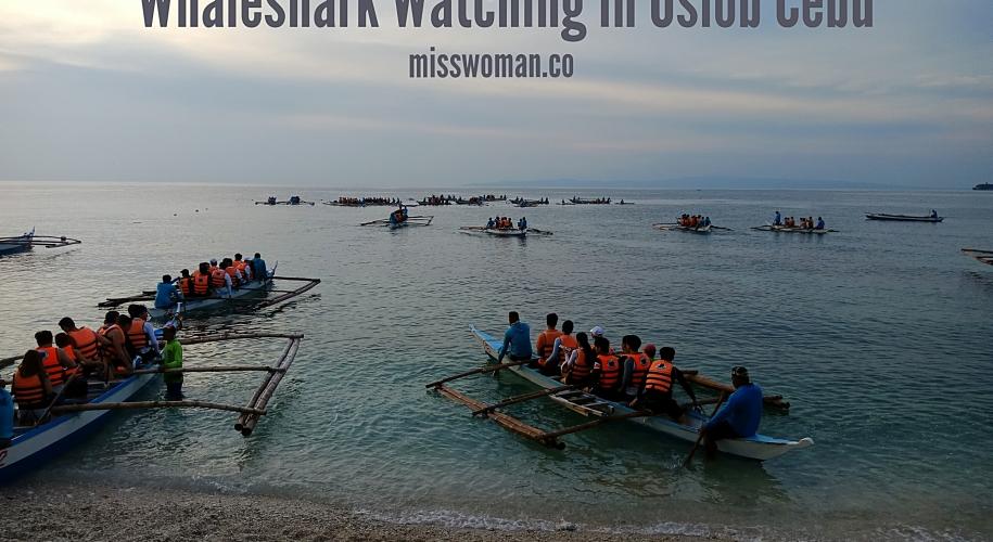Oslob Whale Shark Watching Adventure