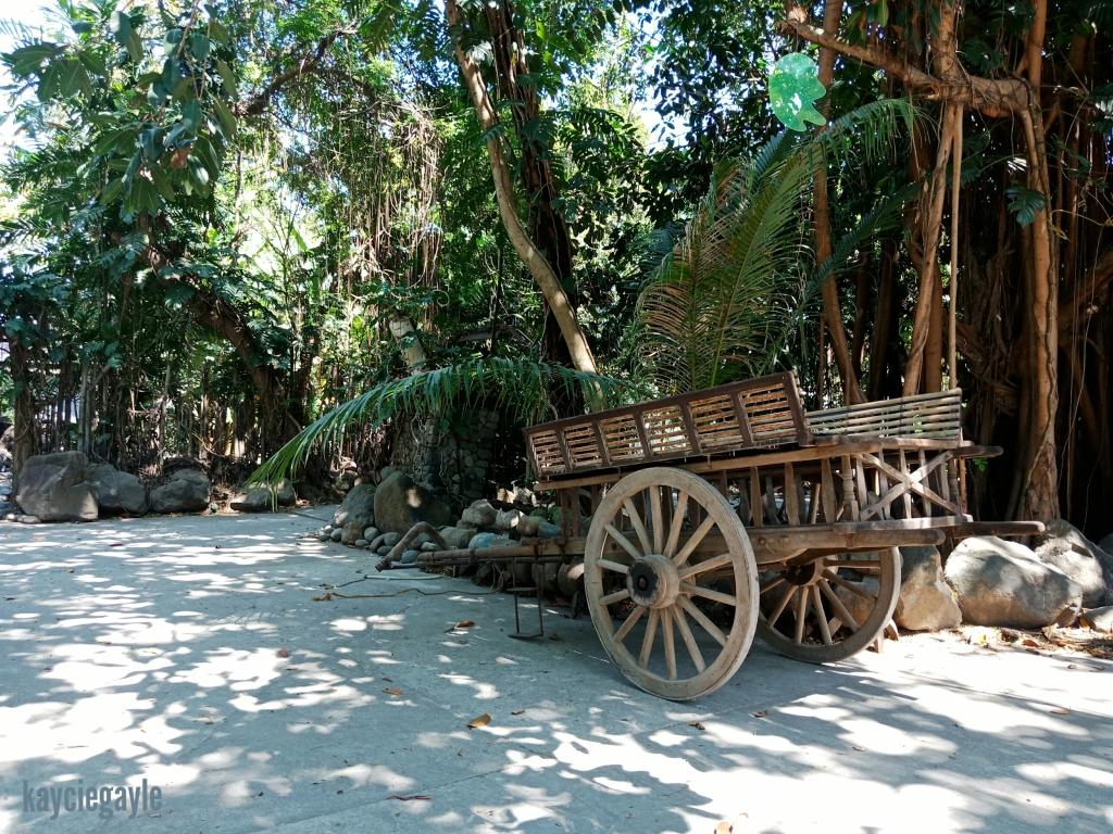Hacienda Tour at Prado Farm Lubao Pampanga caratela carabao ride